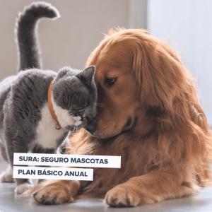Plan Mascotas Básico (Perros y Gatos) Seguros Sura | Hasta 1 año